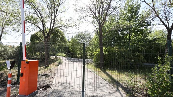 Вокруг ботанического сада ЧелГУ установили забор