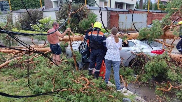 В Центральном районе дерево раздавило автомобиль. Водителя вызволяли спасатели