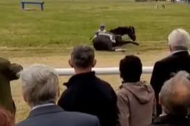 В Башкирии во время скачек лошадь упала вместе с наездником — момент попал на видео