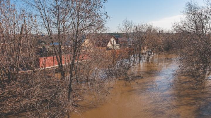 В Перми почистят 3 километра берегов Мулянки