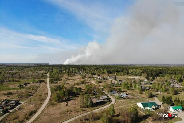 Масштабы пожаров можно оценить с высоты. По данным на 11 мая, по карте пожаров было видно около<nobr>224 квадратных</nobr> километров, которые поглотил огонь