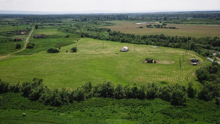 Власти Кузбасса отдали угольщикам еще десятки тысяч квадратов сельхозземель