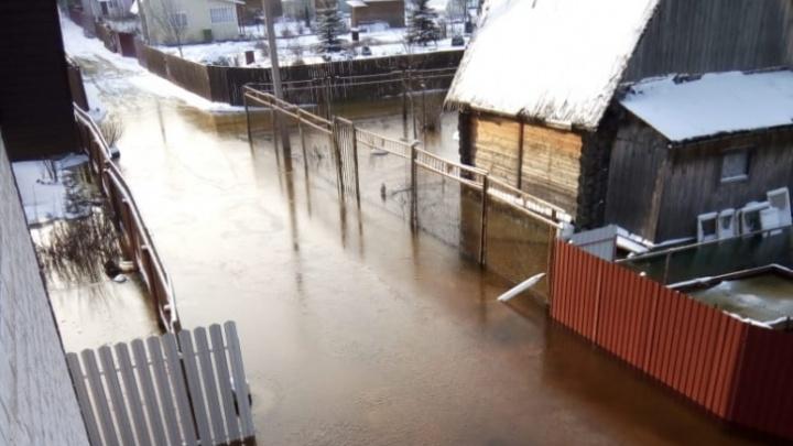 Может затопить дома и дороги: в Ярославской области объявлено штормовое предупреждение о половодье