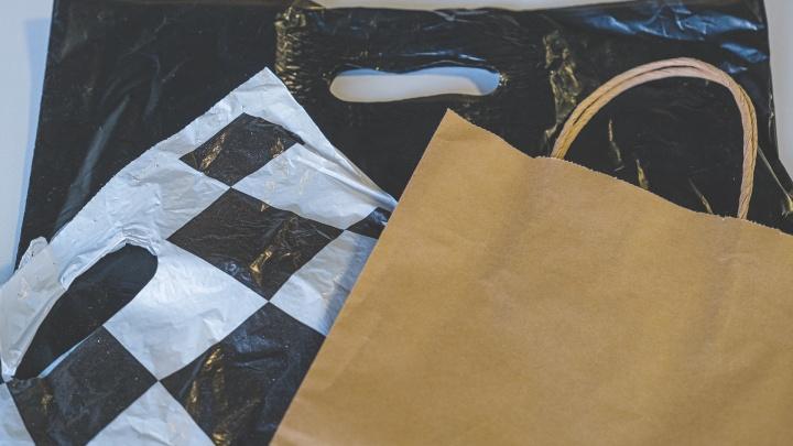 Бумажные или полиэтиленовые? Эксперт пермского Политеха — о том, какие пакеты экологичнее