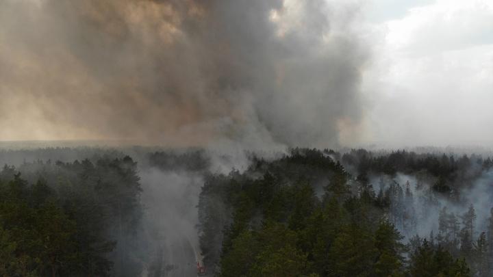 Со стороны не представить, как внутри очага: репортаж Марии Токмаковой из горящего леса под Тюменью