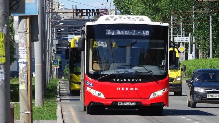 На части автобусов к номеру добавят литеру «К». Что это значит?