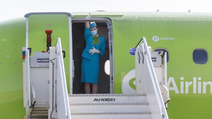 Курорты Болгарии и красоты Душанбе: перевозчики просят разрешения на полеты из Волгограда за границу