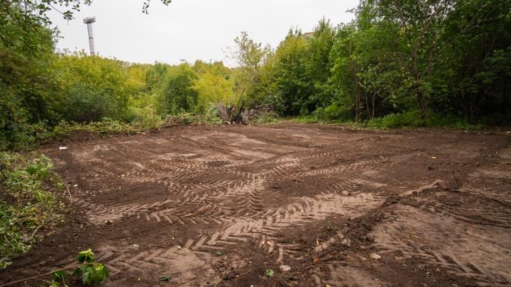 Выкорчевали бульдозером и бросили к реке: в Перми уничтожили часть Сада соловьев на реке Уинке