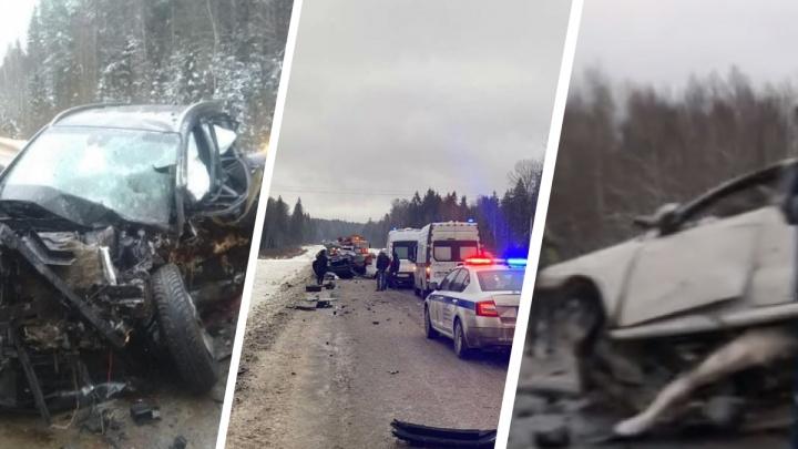 Бьются каждый день: с начала 2021 года в Ярославской области прошла череда смертельных аварий