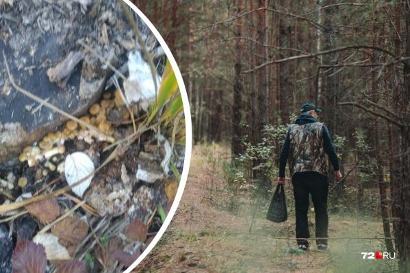 Первые опята грибники заметили в лесу возле Патрушево