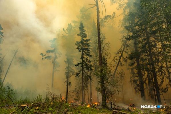 Лесные пожары не первый год становятся причиной смога в крае