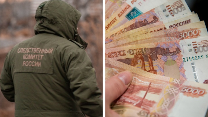 В Новосибирске поймали группу мошенников, которые незаконно вывели за рубеж почти 100 миллионов