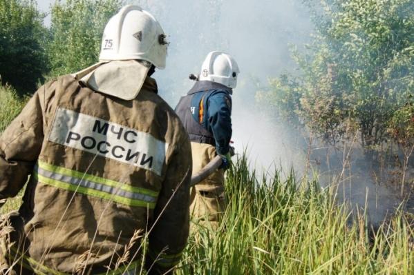Пожарные тушили огонь в лесу четверо суток