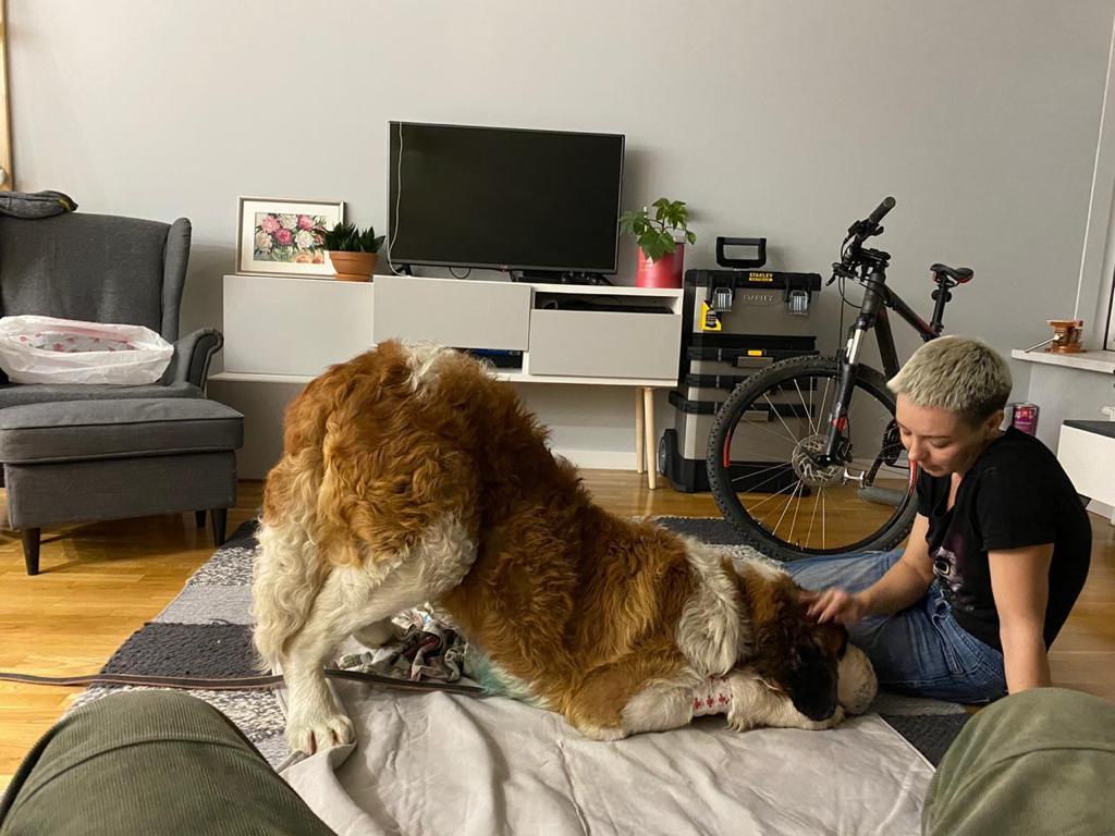 Пока Николай был в командировке, забота об огромном псе легла на плечи Олеси