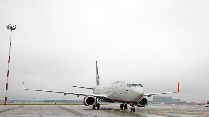 Самолет, летевший из Иркутска, экстренно сел в Новосибирске — пассажиру на борту стало плохо