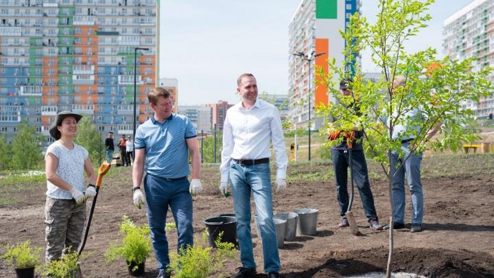 Сбер совместно с главой Красноярска высадил зелёную композицию в парке микрорайона Солнечный
