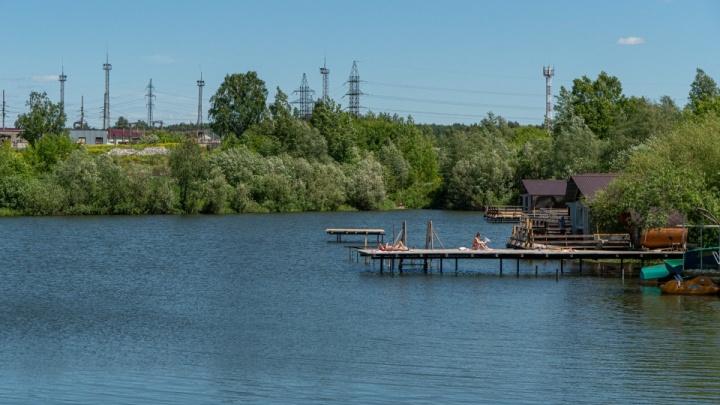 Что скрывает Большая Ельцовка: гуляем с НГС — от маленького озера до президентского пруда и настоящего леса