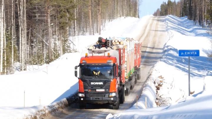 Вывоз леса увеличили и зарплаты прибавили: зачем в УЛК купили прицеп, которого больше нет в России