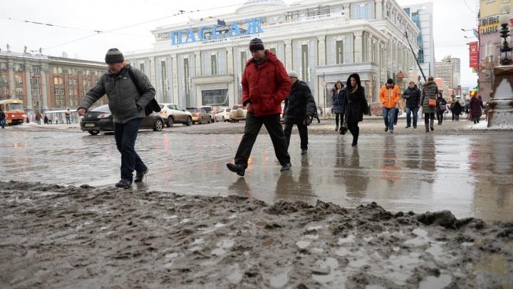 Потеплеет до+10: синоптики рассказали, когда в Екатеринбург придет настоящая весна