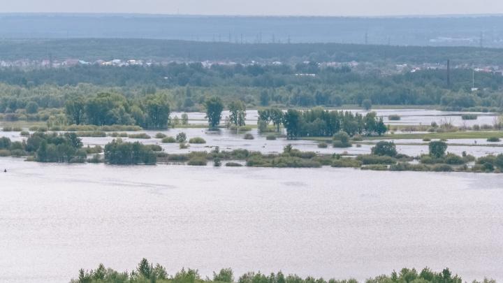 Это не конец: в Самарской области затопило дачи
