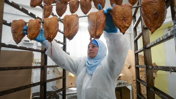 Три четверти уже уволились: прокуратура проверит законность сокращений на Среднеуральской птицефабрике