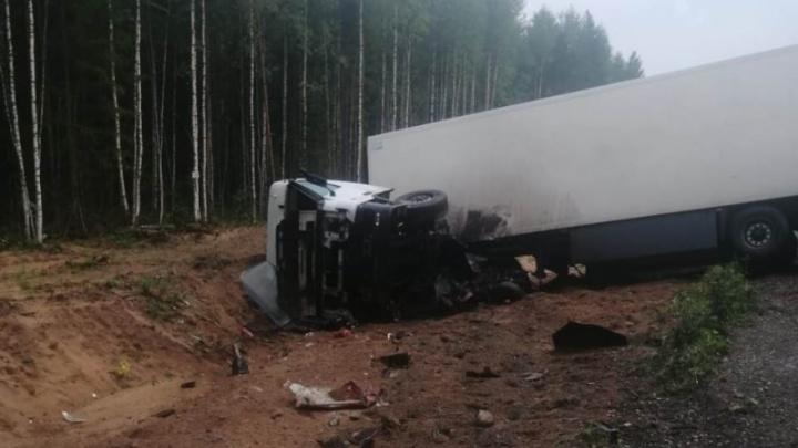 В Плесецком районе грузовик столкнулся с легковым автомобилем. Погибли трое человек