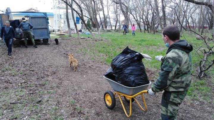 Регоператоры рассказали, где больше всего мусора собрали за минувшие выходные