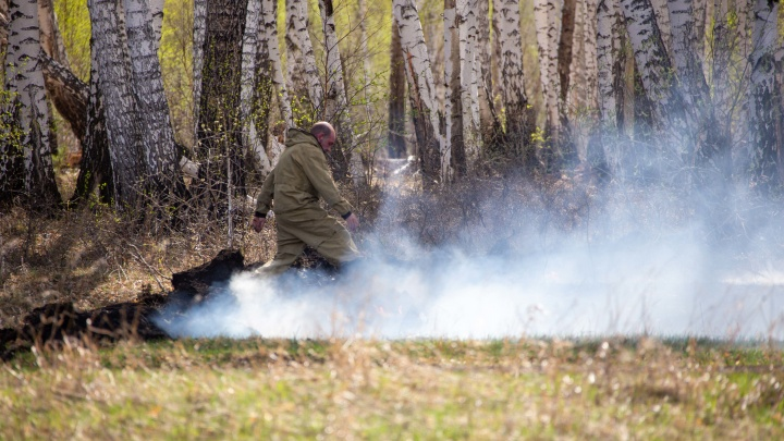 Шквальные ливни и огнеборцы справились со всеми лесными пожарами в Югре