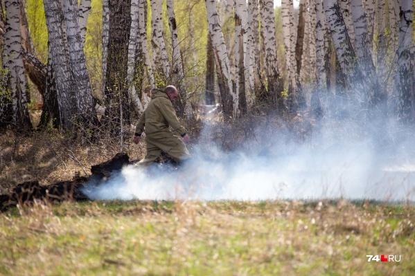 В большинстве случаев причинами лесных пожаров стали грозовые разряды