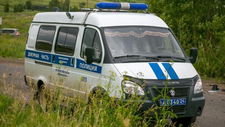 Неизвестный сбил пожилого мужчину на трассе под Минусинском и бросил умирать. Полиция ищет очевидцев