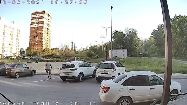 «Кусают через день»: в Волгограде на детей бросилась стая бездомных псов — видео