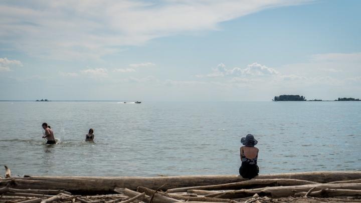 Мэрия хочет привлечь частного инвестора для Центрального пляжа Академгородка