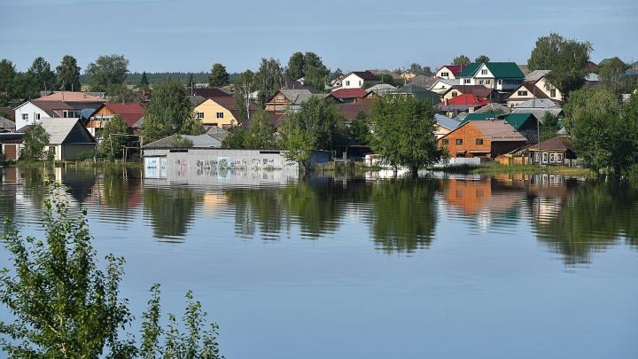 Миллионы за убитый урожай: сколько выплатили пострадавшим от наводнения в Свердловской области