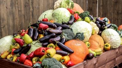 С грядки на стол: классные и простые идеи летних овощных закусок