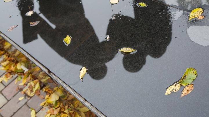 Падение в осень: МЧС предупреждает волгоградцев о надвигающемся шторме