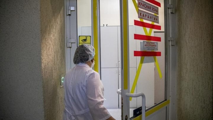 В НСО впервые за 2,5 месяца за сутки зарегистрировали больше 100 заболевших коронавирусом
