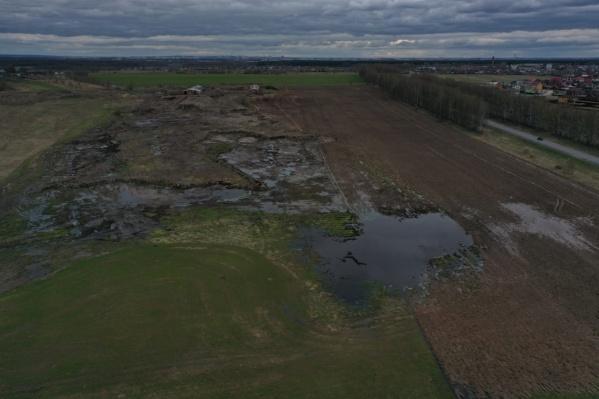 Местные подозревают, что навоз в Шиголость попал с полей местных сельхозпредприятий
