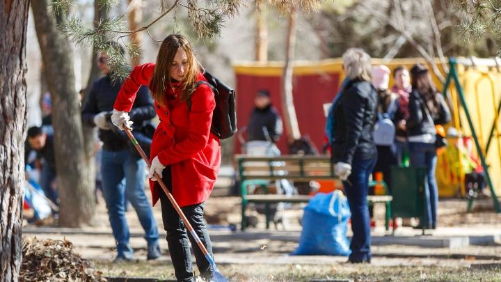 В Волгограде пообещали за месяц ликвидировать 17 свалок и покрасить 194 скамейки