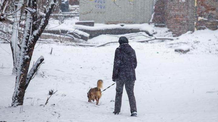 Снежная буря и эксклюзивная крещенская купель: главные новости 16 и 17 января в Ростове