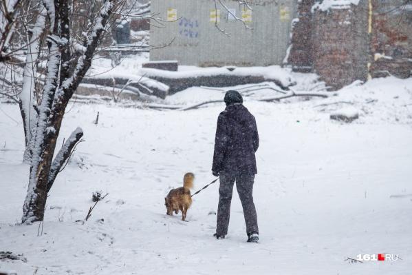 Снегопад в Ростове продолжается