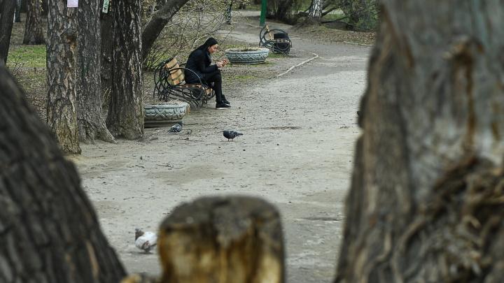 До Урала к выходным доберутся дожди, которые два дня заливали москвичей