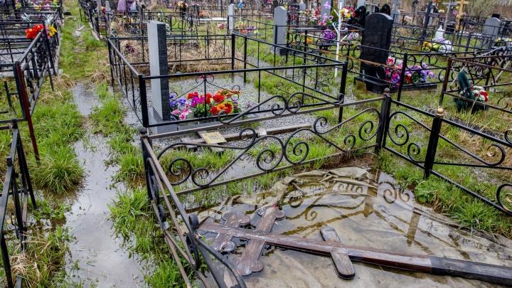 Кресты плавают в лужах: в Ярославле затопило Осташинское кладбище. Опять
