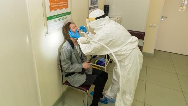 Где и как в Перми сделать справку о ПЦР-тесте на коронавирус на английском? Инструкция