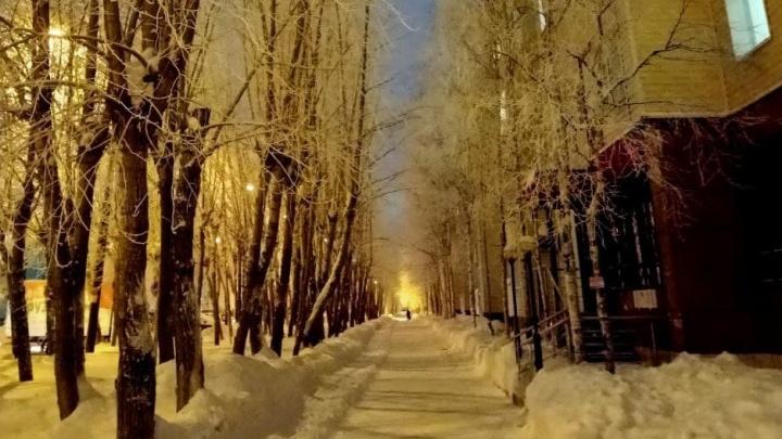 Мороз под сорок: в Сургуте объявили актировку для всех школьников первой смены