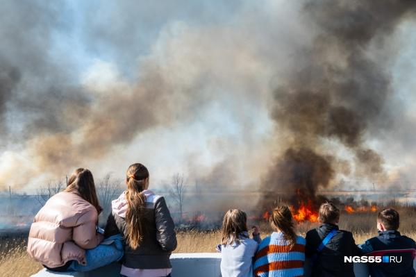 Весенние пожары случаются каждый год, но масштаб всегда разный