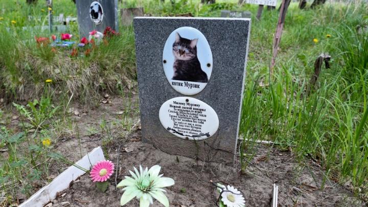 В Кургане хотят создать кладбище для домашних животных