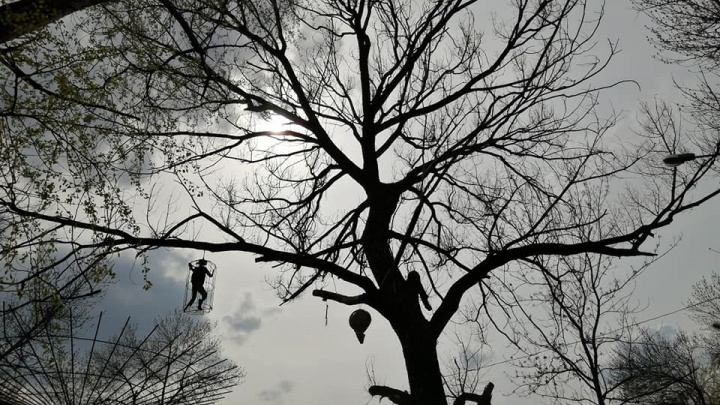 «Кладбище детства»: жителей Канавина пугает оформление парка им. 1 Мая