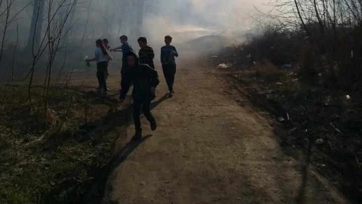 Дым был страшный, даже солнце заслонило: на юге Волгограда вспыхнули сухой камыш и мусор