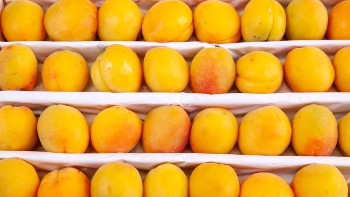 Черешня по 600, абрикос — за 400. Где искать спелые фрукты и ягоды в Тюмени и как на них сэкономить