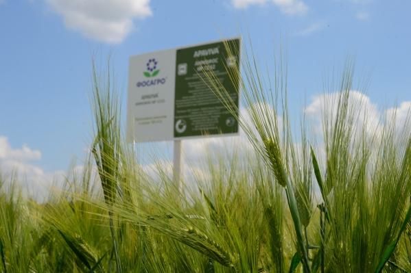 """В выставке приняли участие более <nobr class=""""_"""">150 производителей</nobr> сельскохозяйственной техники и агротехнологий"""